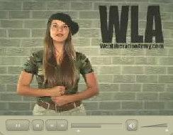 Sonya Video Interface